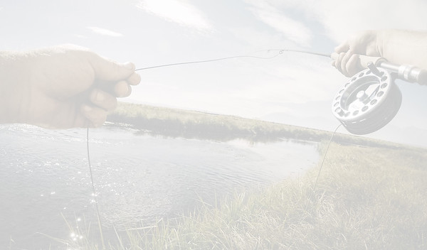 Fly fishing the Upper Owens River. Benton, CA
