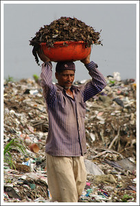 Waste Pickers working on a City Landfill