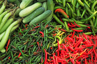 Many, many types of peppers