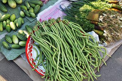 Some loooooong string beans