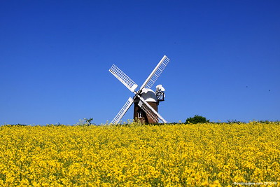 Wilton Windmill (May 2010)