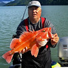 OLYMPUS DIGITAL CAMERA - Beautiful Yellow Eye on a wonderful sunny Alaska day!