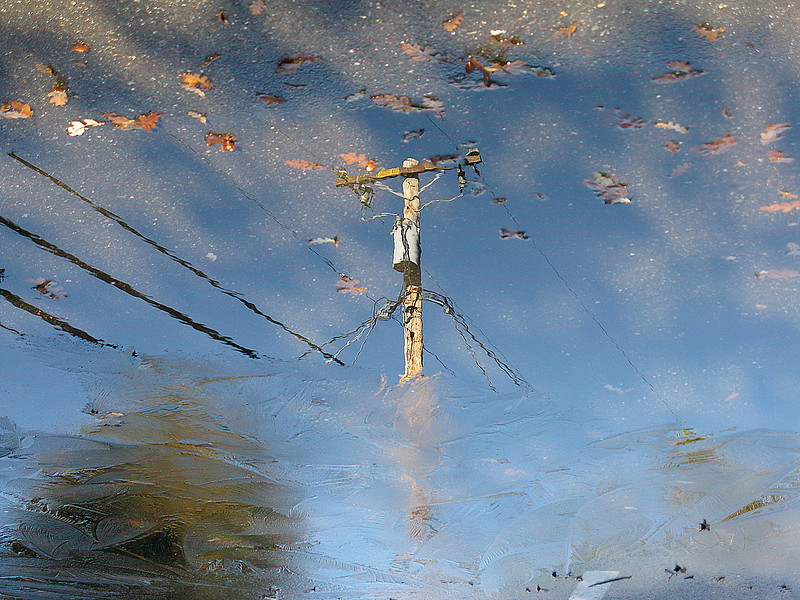 The Sticks/Puddle reflections