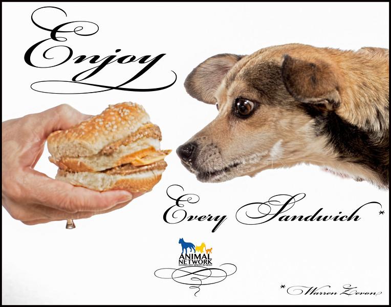 Maggi - Enjoy Every Sandwich