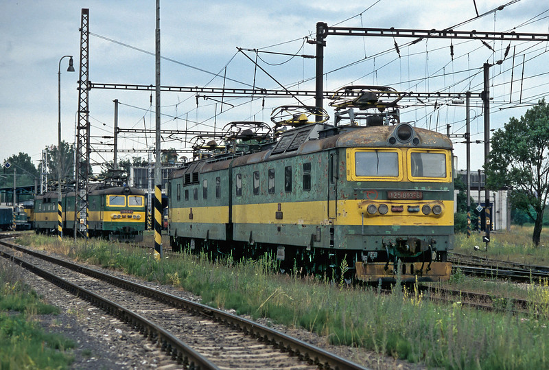 Sat at the top of the yard of Haniska pri Kosiciac depot and looking as if they had not worked for a while and are (possibly) next in line for major overhaul were ZS Cargo 125.813 + 125.814 on 30 June 2008