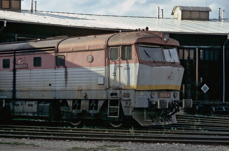 With signs of previous ownership on the side that indicate that it hasn't been repainted for a long, long time ZS Cargo 751.112 sits out the weekend at Zilina depot on 28 June 2008