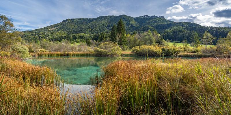 The emerald green Zelenci Lake