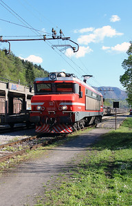 363 019 (91 79 1363 019-5) at Borovnica on 21st April 2015 (4)