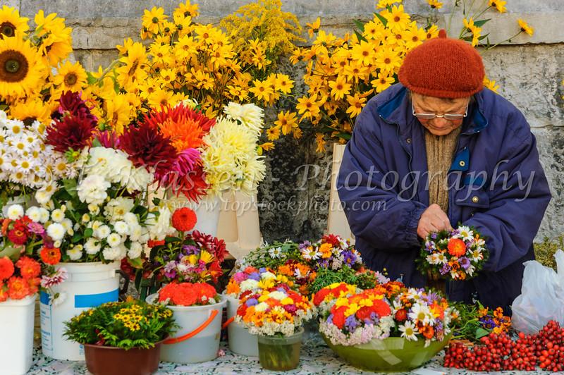 An outdoor flower market in Ljubljana, Slovenia.