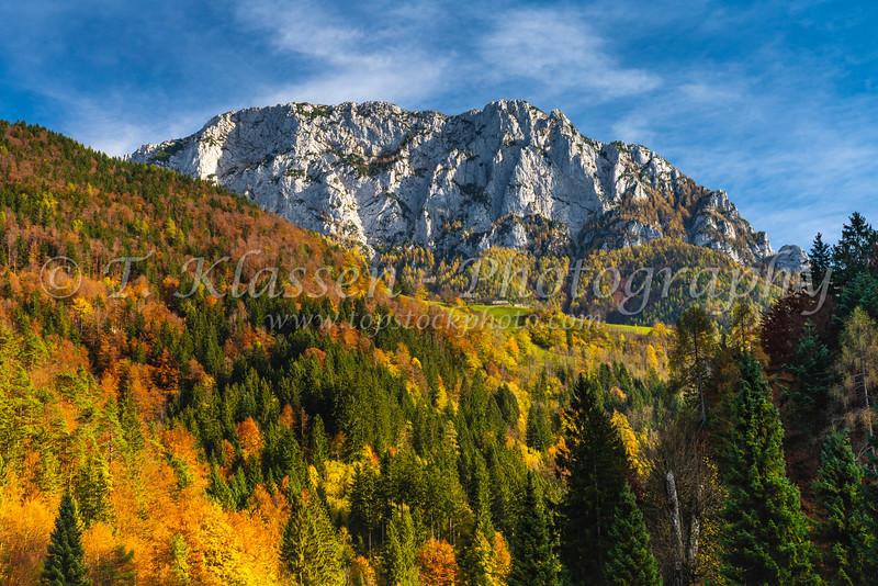 Fall foliage color in the Kamnik Alps at Solcava, Slovenia, Europe.