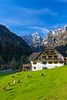 An alpine scene in Rabanov Kot with fall foliage color in the Logar Valley, Slovenia, Europe.