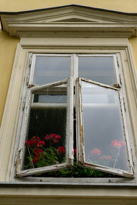 Window with Flowers, Ljubljana