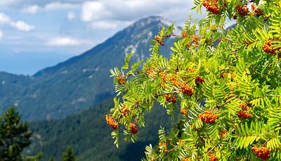 The Julian Alps., near Ljubljana