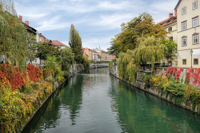 River Ljubljanica in Autumn