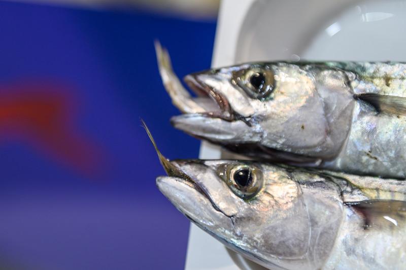 Asta del pesce