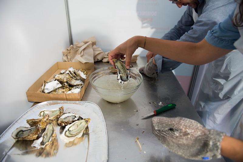 Ostriche e Alta Langa – Laboratorio del Gusto