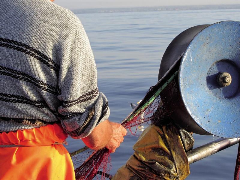 Piccola pesca di Porto Cesareo | Porto Cesareo Small-Scale Fishing