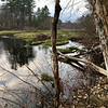 The late afternoon was still and peaceful on this April day in Billerica. Photo by Mary Leach