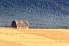 Rustic Montana Barn
