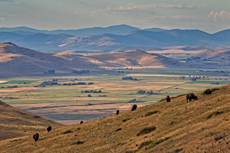 Bison Range Mountain