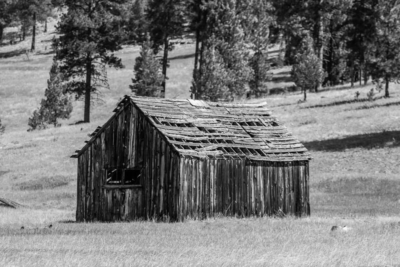 Montana Shack