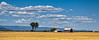 Montana Farm Panoramic