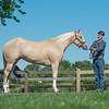 Justins horses-102