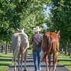 Justins horses-129