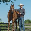 Justins horses-110