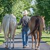 Justins horses-128