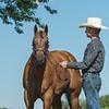 Justins horses-113