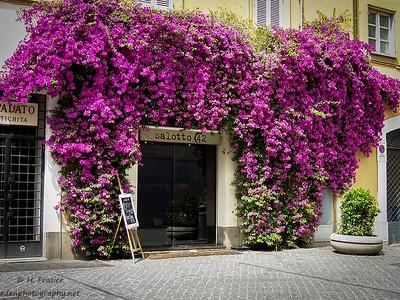 Salotto 42 Restaurant: Piazza di Pietra, Rome, Italy
