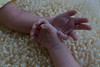 sisters' hands, 3 weeks old