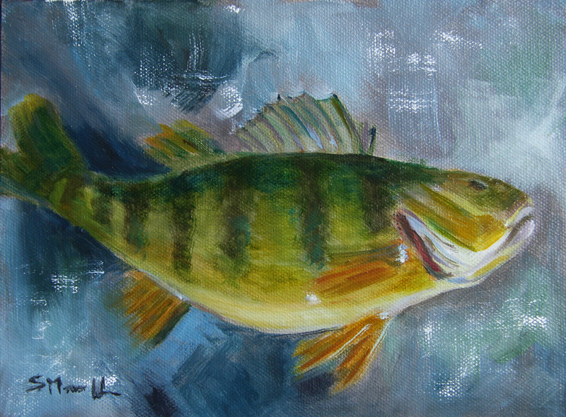 """""""Yellow Perch"""" © 2013, Susie Morrell, 6x8, oil on panel. private collection"""