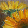 """Peeking Sunflower"" © 2010 Susie Morrell 6x6 original oil on panel: private collection"