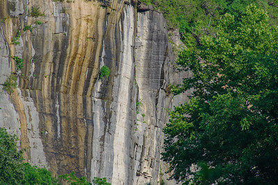 Buffalo River rock bluff and foliage on the right