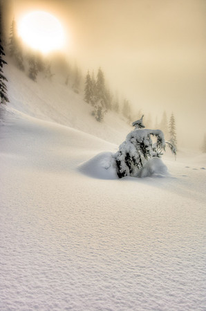 Gold-Creek_Snow-Shoe-1