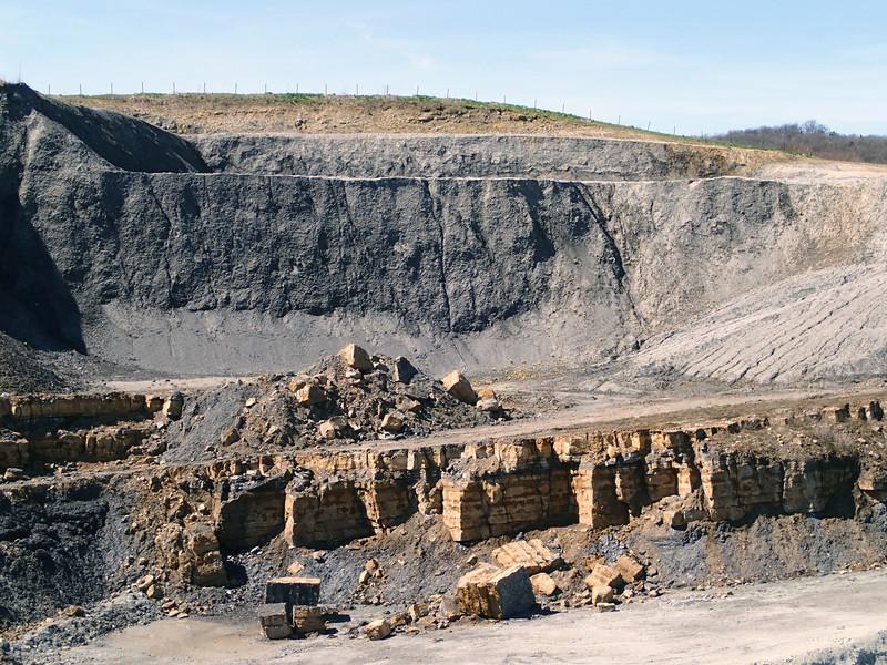 """Frick clay pit, """"Insektenmergel""""-""""Arieten-Angulaten-Kalke""""-""""Obtusus-Tone""""-""""obliqua-Schichten"""" succession (Early Jurassic), Switzerland<br /> <br /> Olympus TG-1"""