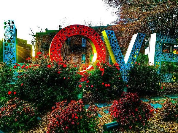 Reel Love- Culpeper, VA