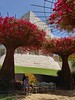 Bougainvillea Tree Sculpture