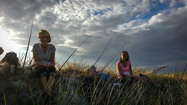 Onsdags vandring  Solrød strand - Ølgod
