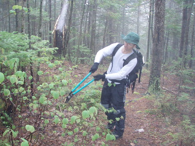 The trail overall was in pretty good shape but we did have to cut some encroaching vegetation blocking the trail.