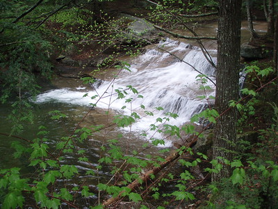 We plan to take a dip next time we perform trail maintenance in July.