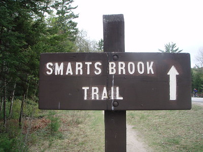 Smarts Brook Trail begins on Route 49 after Sandwich Notch Road.