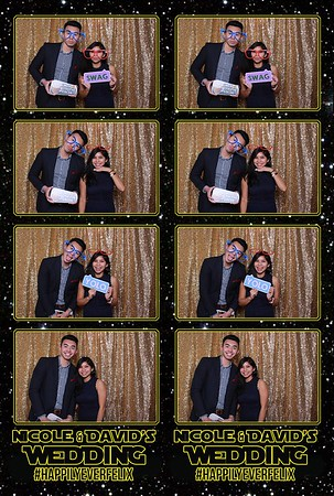 Nicole & David Wedding - 1/6/17