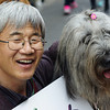 Today's smiling faces travel photo is of a Korean man with his adorable dog posing together in Insadong - Seoul, South Korea.