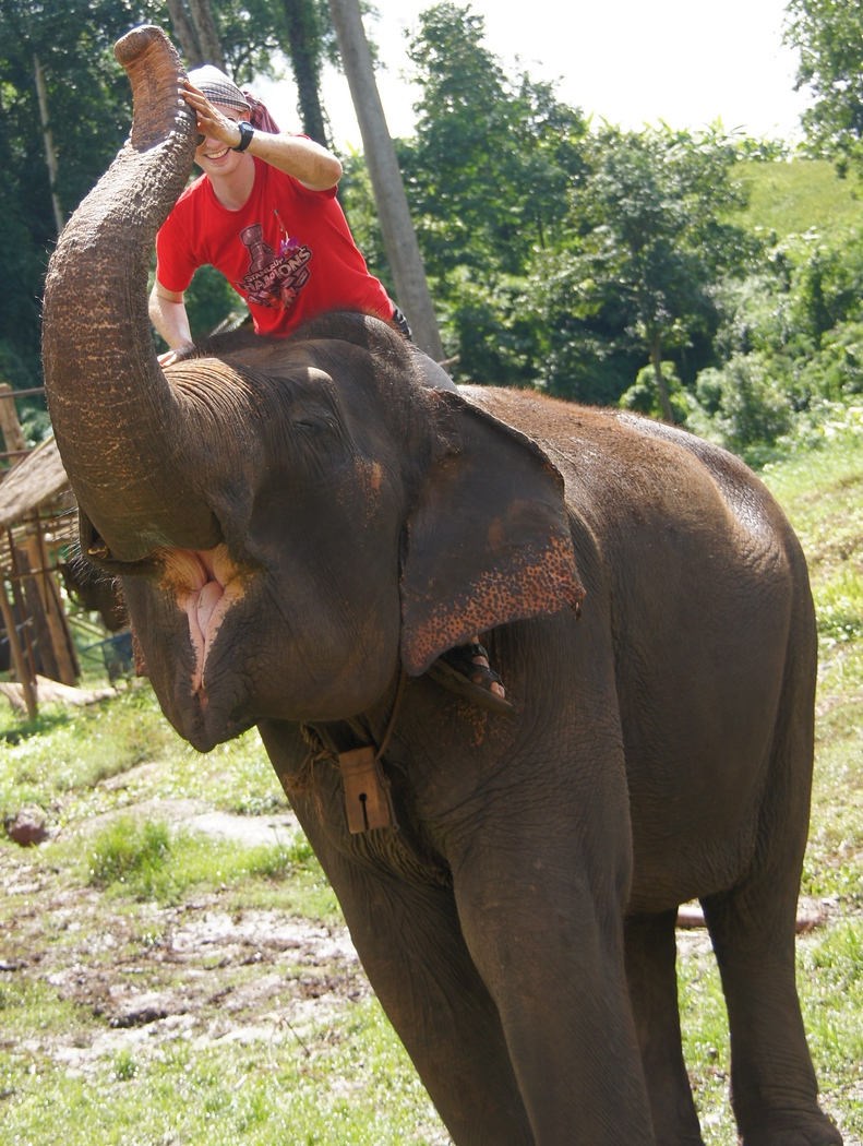 Today's smiling faces travel photo is of Nomadic Samuel smiling while riding an elephant that appears to also have a big grin  - Chiang Mai, Thailand.