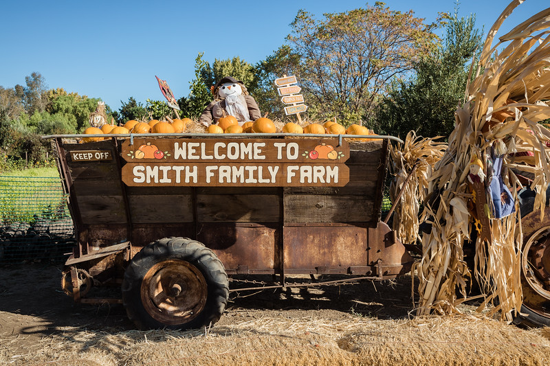 DAISY_COBY_2018_SMITH_FAMILY_FARM_0011