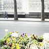 Seine scenes-flower stands