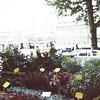 Seine scenes